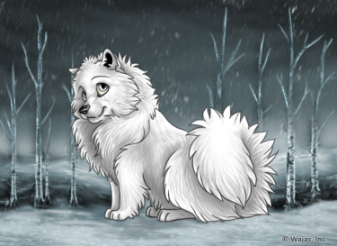 WinterCirrusFieldsWallpaperSpitz.png