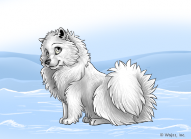 SnowyWallpaperSpitz.png