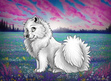WildflowerFieldNightWallpaperSpitz.png